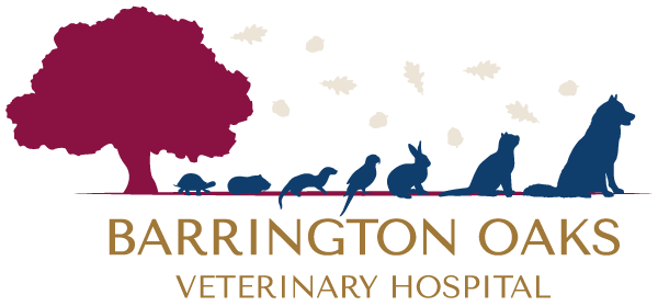 Barrington Oaks Veterinary Hospital